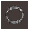 CBG_Logo_transparent_PNG